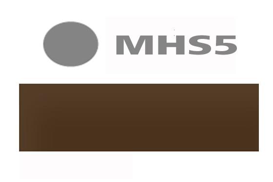 MHS 4 antique VacuSafe 10ml