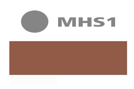 Modern Hair Solution Pigmentierfarbe